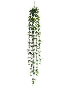 Round Leaf 5 Stand plant Light Green 82c